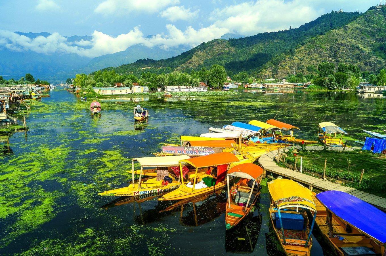 Srinagar_Dal_Lake_Sudhakar_Bichali.jpg